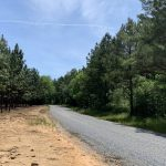 606 ACRES PINE STRAW AND RECREATION LAND IN MARION JUNCTION AL