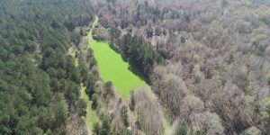 808 ACRE HUNTING AND TIMBERLAND TRACT