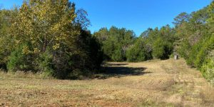 Rutt  N ACRES EAST TRACT