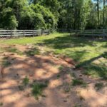76.5 ACRES SPORTSMAN PARADISE IN BULLOCK CO ALABAMA at Co Rd 14 for 158000
